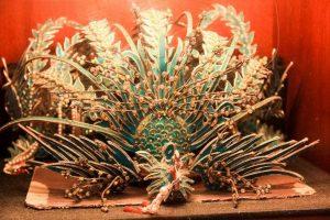 phoenix crown